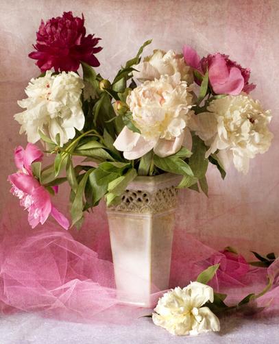 Bouquet de fleurs à Cannes